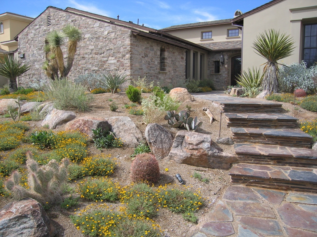 Landscapes landscaping reno haymond horticulture 775 for Outdoor design reno